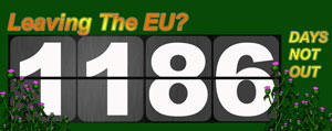 Scoreboard10G_300